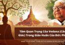 Phụ lục A: Tầm quan trọng của vedana (cảm giác) trong giáo huấn của Đức Phật