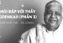 Video Nghệ thuật chết – Hỏi đáp với thầy Goenkaji (Phần 3) – S.N. Goenka